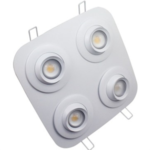 36W Angle Variable LED Down Light