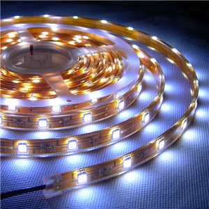 5050 LED Flexible Strips IP68 Waterproof