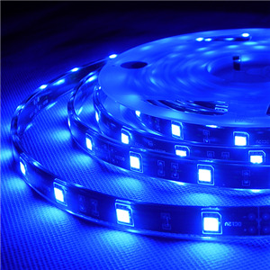 3528 LED Flexible Strips IP68 Waterproof
