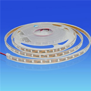 3528 LED Flexible Strips IP67 Waterproof Silicone Tube