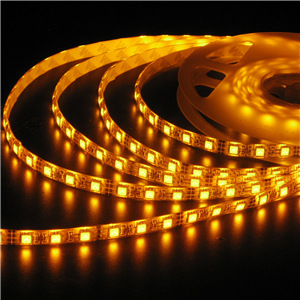 3528 LED Flexible Strips IP65 Waterproof Drop Glue